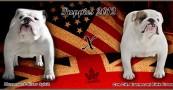 2012 Planned Breeding #1