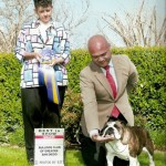 March 18, 2011 - Gogo winning WB, BW and BISS at the Bulldog Club of Greater San Diego under Breeder-Judge Mrs. Toni Stevens. Handler Jay Serion.